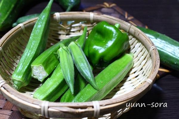 お野菜たち_e0340671_19142624.jpg