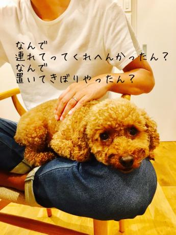 スタバママ_b0370192_10175279.jpg