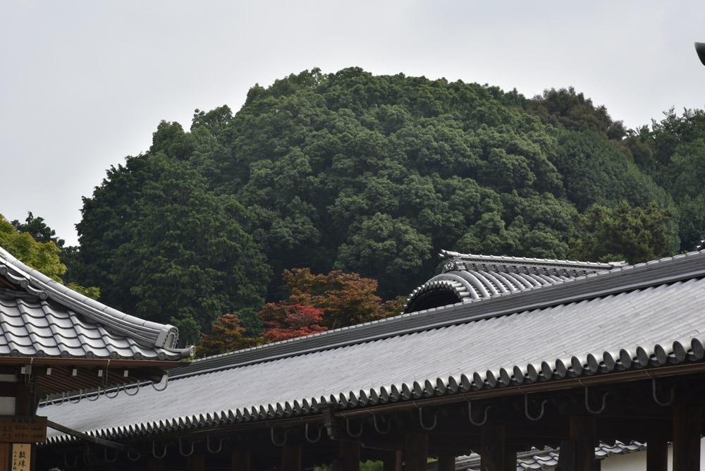 夏こそ京都_e0367330_17471235.jpg