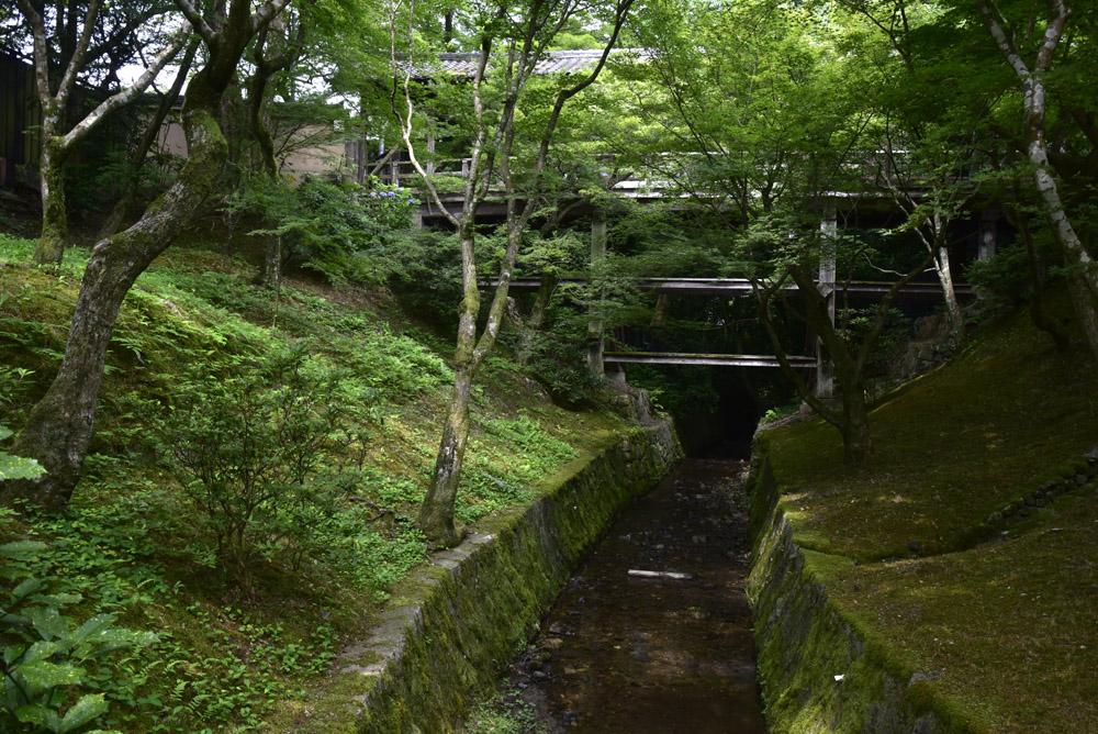 夏こそ京都_e0367330_1752396.jpg