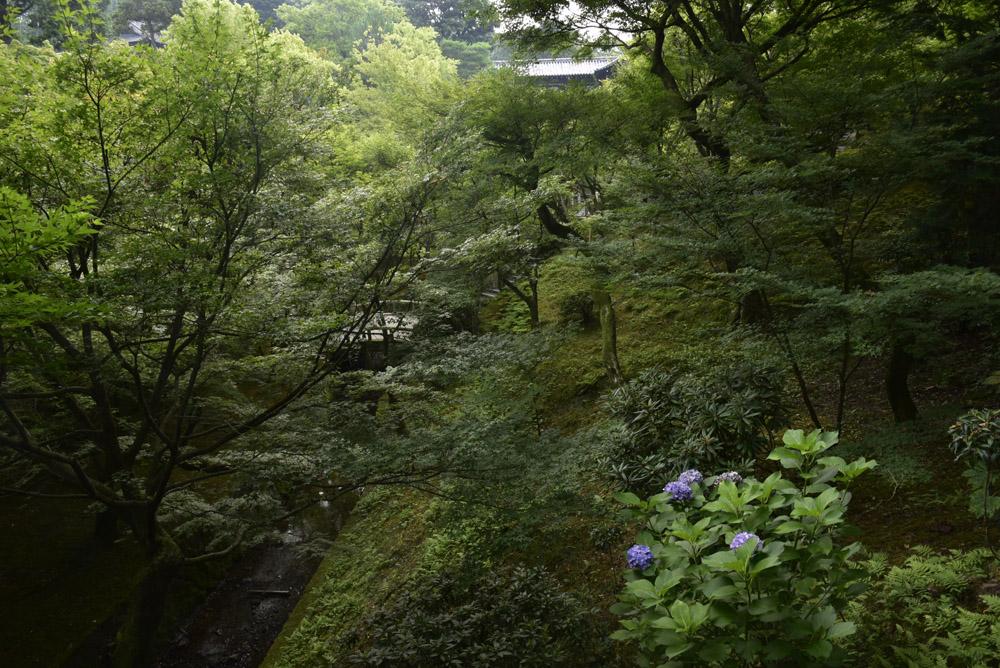 夏こそ京都_e0367330_17551418.jpg