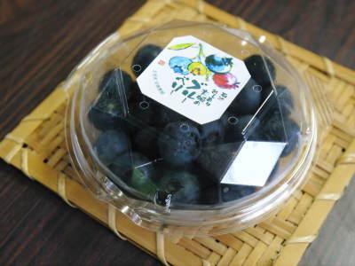 フレッシュブルーベリーが今まさに最旬!無農薬栽培の朝採りブルーベリーを即日発送でお届けします!_a0254656_18260328.jpg
