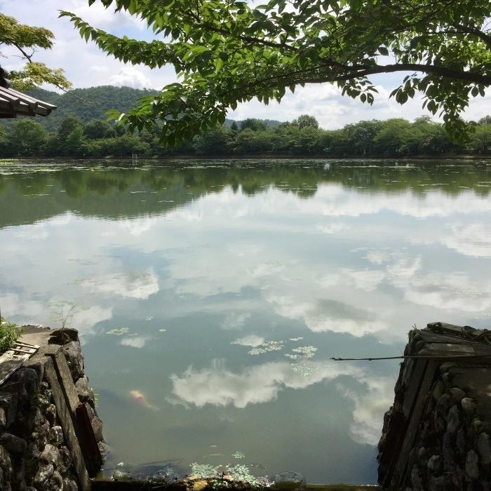 夏を噛み締めて。 大沢池_d0105967_18013421.jpg