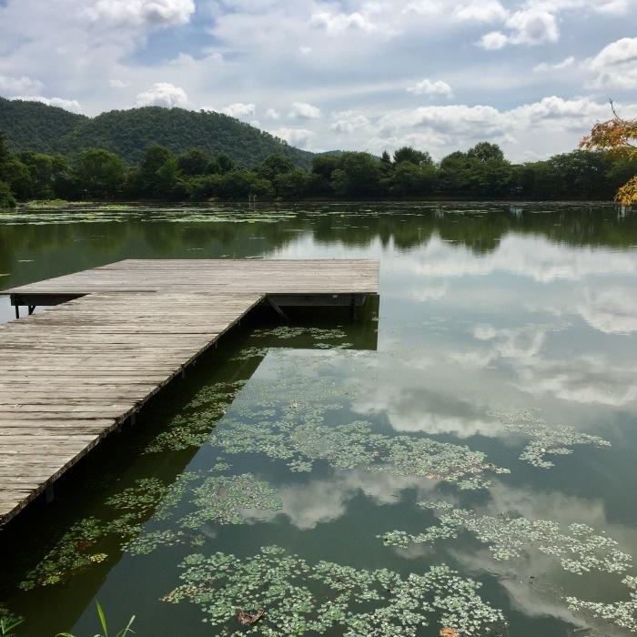 夏を噛み締めて。 大沢池_d0105967_18141566.jpg