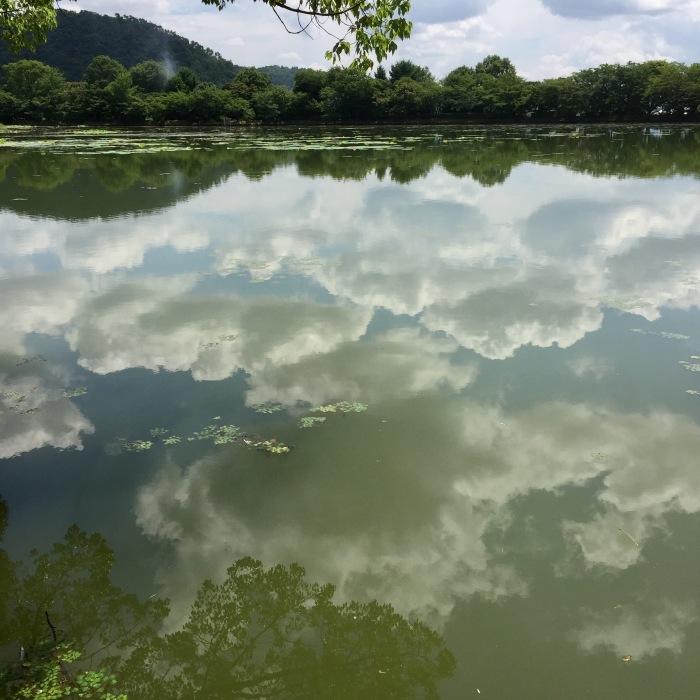 夏を噛み締めて。 大沢池_d0105967_18173452.jpg
