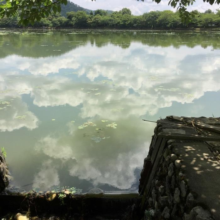 夏を噛み締めて。 大沢池_d0105967_18462363.jpg