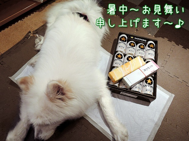夏の贅沢_c0062832_09541302.jpg