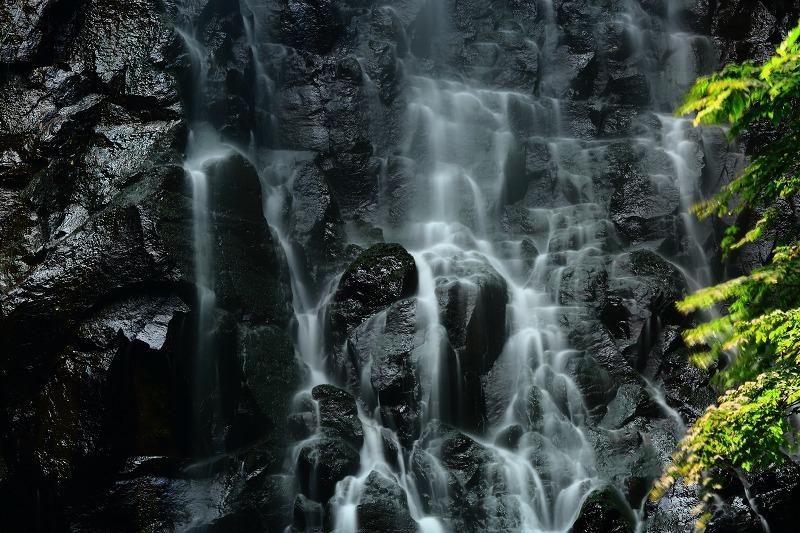 霧降りの滝_a0294534_18441327.jpg