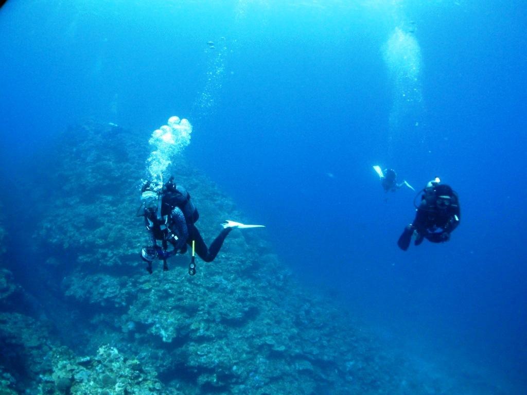 西表島遠征~(*^^*)_a0189838_06133285.jpg