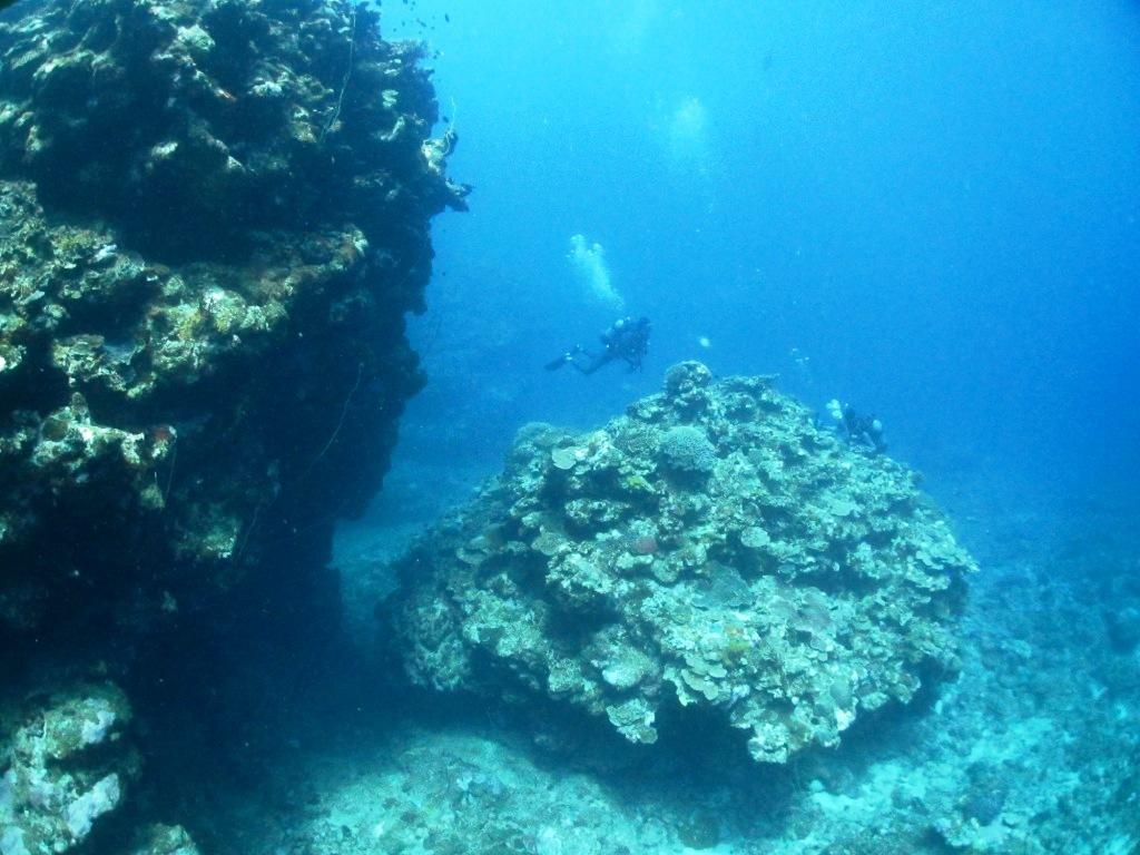 西表島遠征~(*^^*)_a0189838_06142391.jpg