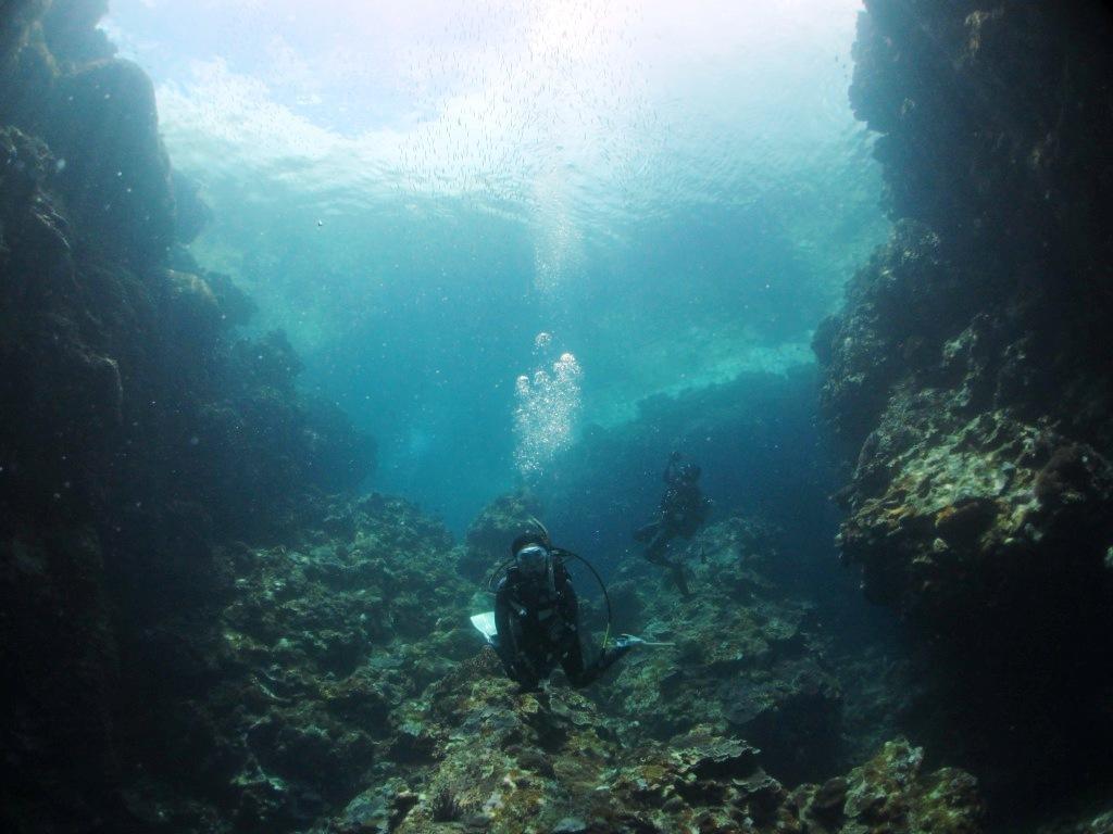 西表島遠征~(*^^*)_a0189838_06190241.jpg
