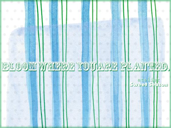 f0237141_00270241.jpg