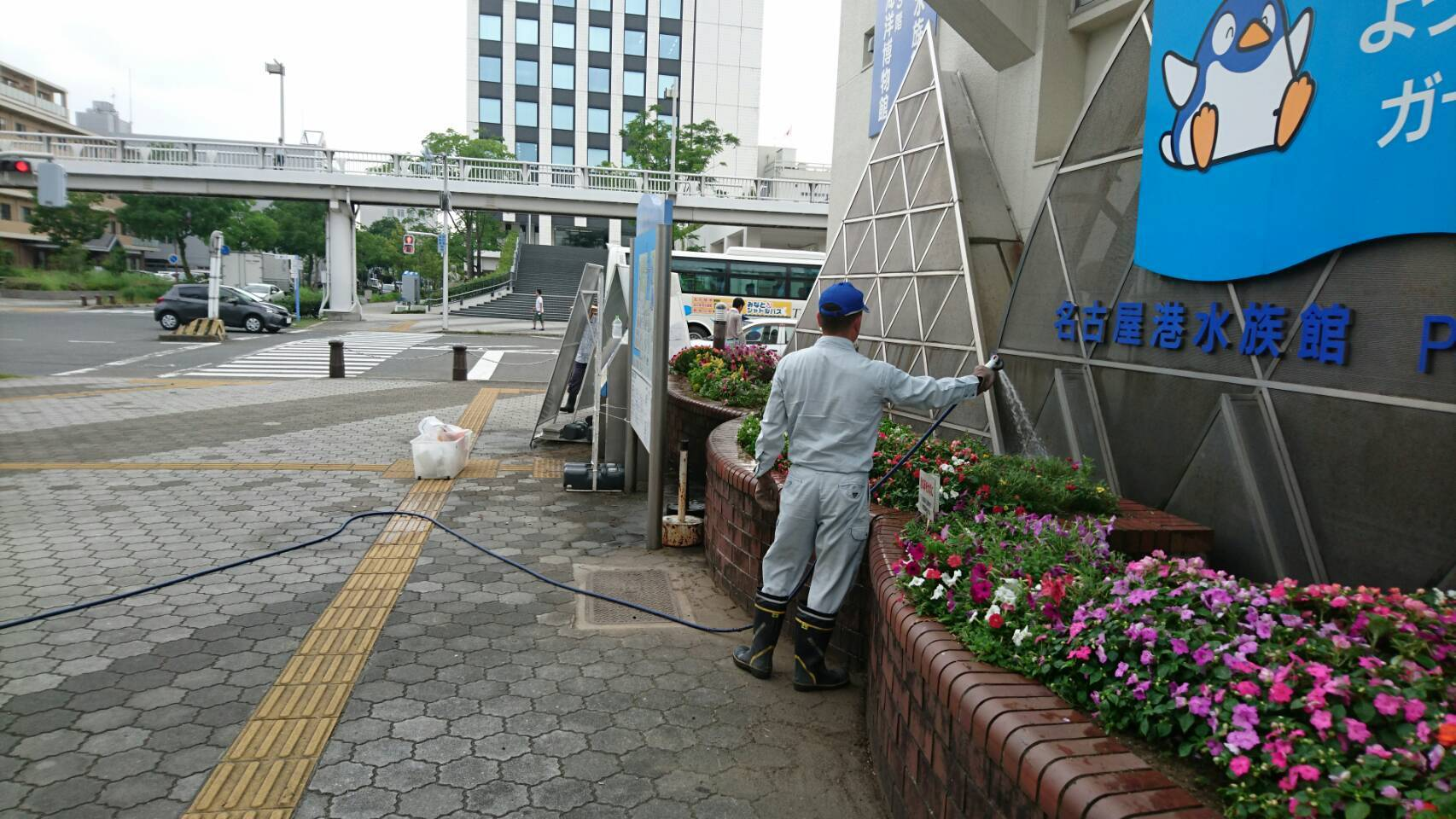 ガーデンふ頭総合案内所前花壇の植替えH29.7.24_d0338682_09094309.jpg