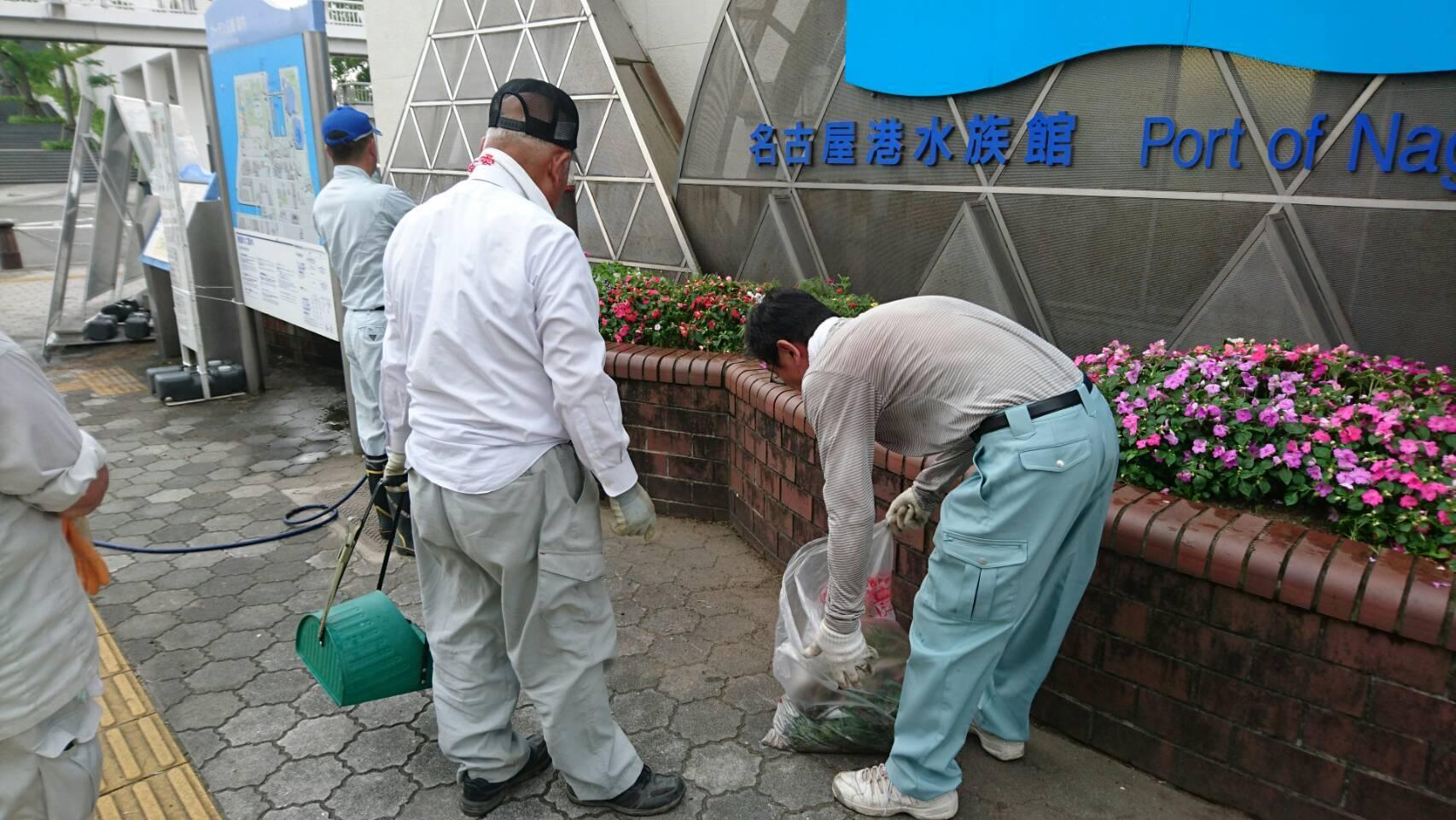 ガーデンふ頭総合案内所前花壇の植替えH29.7.24_d0338682_09104777.jpg