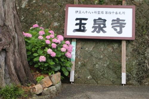 伊豆下田の玉泉寺・1_c0075701_23385918.jpg