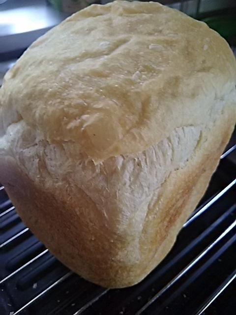 パンとメロンとちゃたろうと_f0316507_15222332.jpg