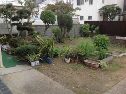 庭木剪定_c0186441_19402335.jpg