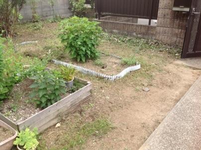 庭木剪定_c0186441_19432345.jpg