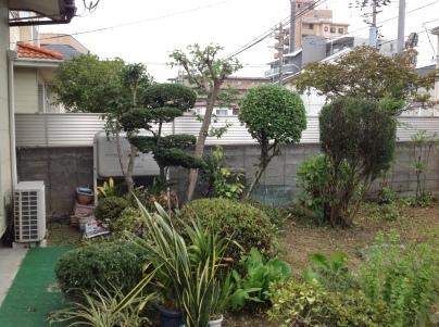 庭木剪定_c0186441_19462631.jpg