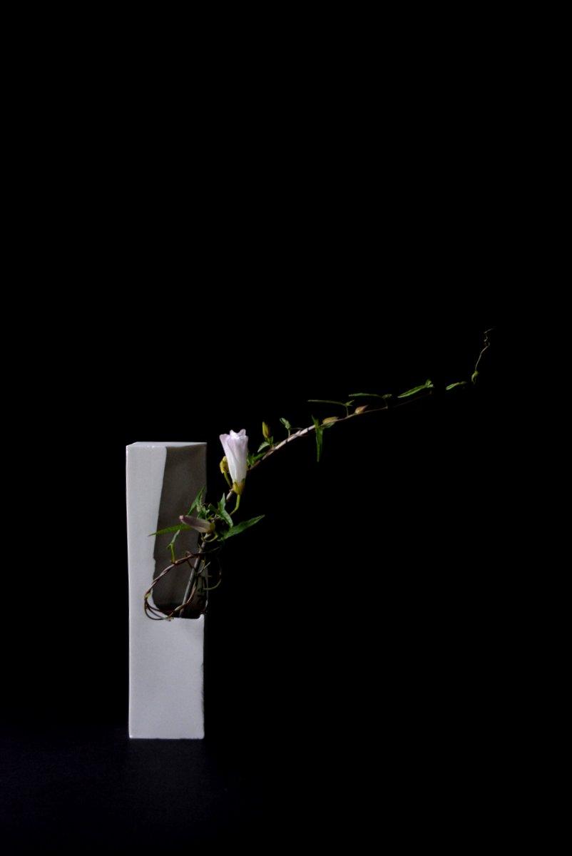 「 白石陽一展 土の現象 」 花もまた_d0087761_1511162.jpg