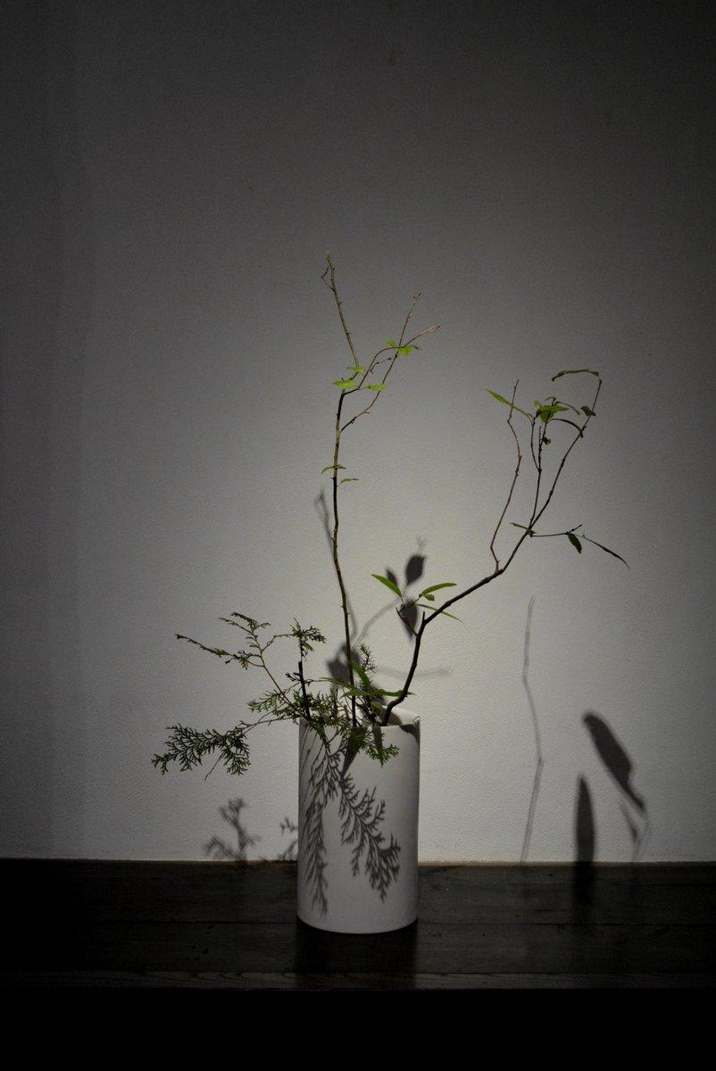 「 白石陽一展 土の現象 」 花もまた_d0087761_15114071.jpg