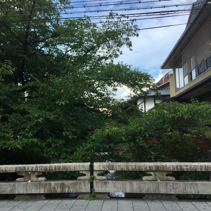 祇園と特別な夜_d0105967_11330872.jpg