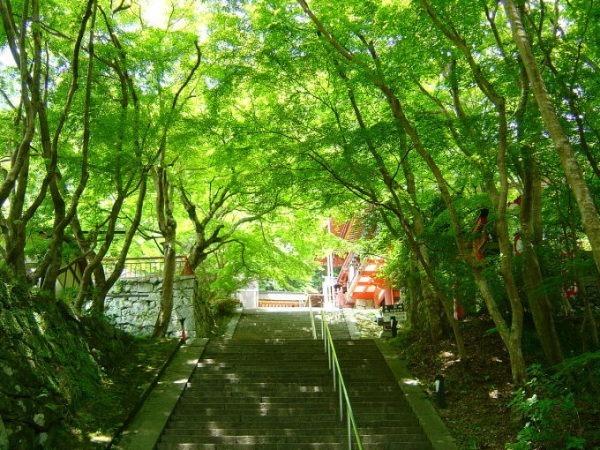 書き出したらどうでもよくなってきた自分の夏。日本の夏。_f0180307_21375198.jpg