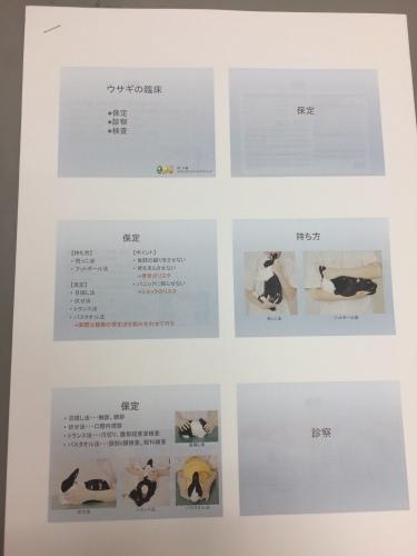 エキゾチック勉強会_d0156734_23115209.jpg
