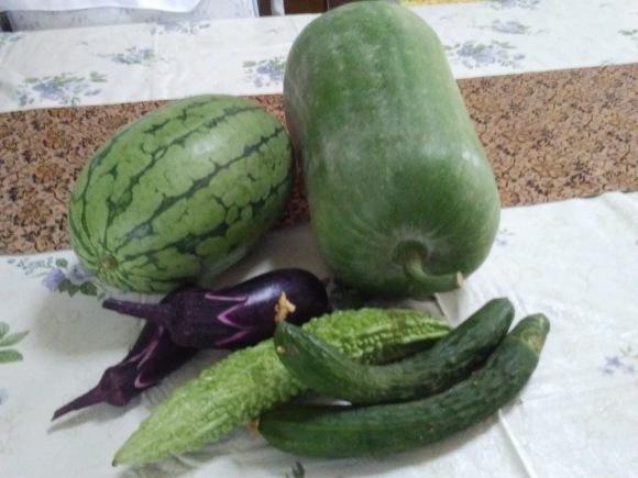 夏野菜_d0116059_09244369.jpg