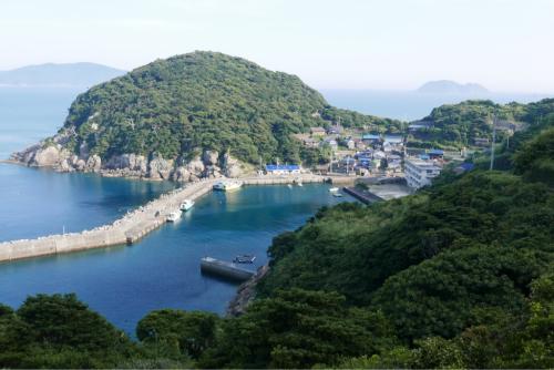 海界の村を歩く 鵜来島(高知県)_d0147406_04495381.jpg