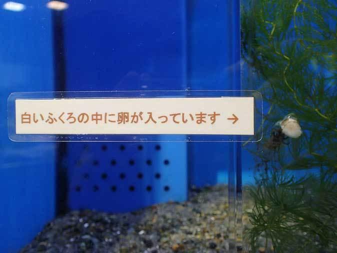 b0355317_22301634.jpg