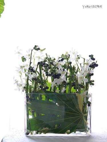 白いお花と中国茶_a0169924_20154791.jpg