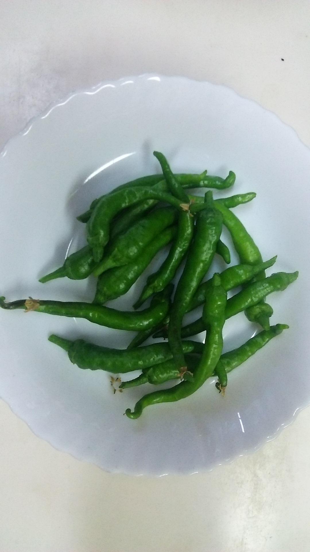 今シーズン初収穫の夏野菜_c0338136_17331137.jpg