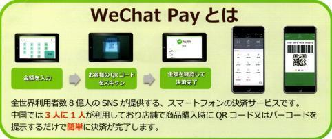 中国客向けモバイル決済導入はどこまで進むだろうか?_b0235153_16475988.jpg