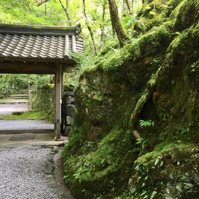 高山寺  ②緑と苔と_d0105967_12311766.jpg