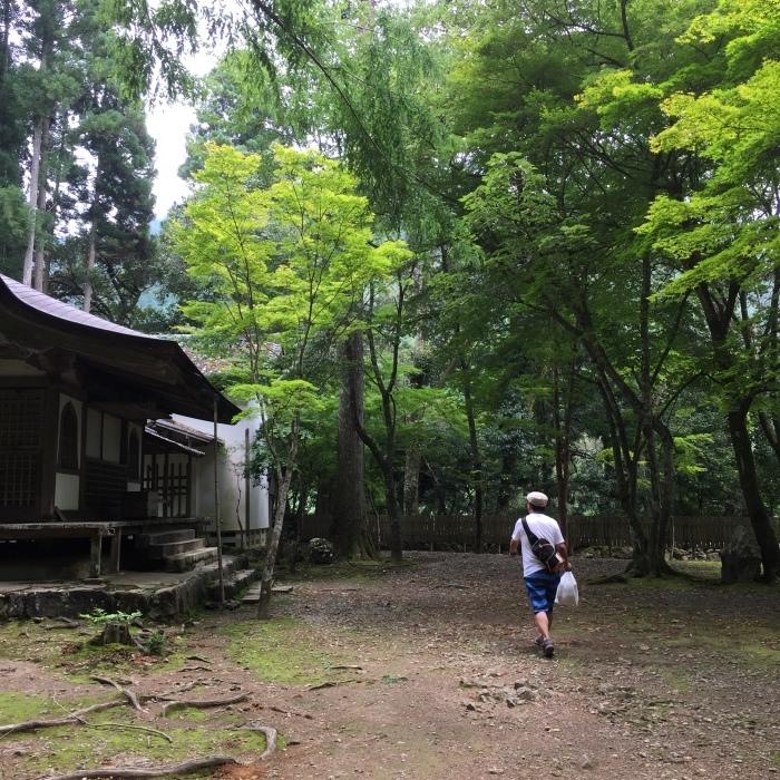 高山寺  ②緑と苔と_d0105967_12591181.jpg
