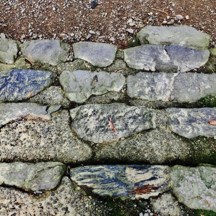 高山寺  ②緑と苔と_d0105967_14031342.jpg