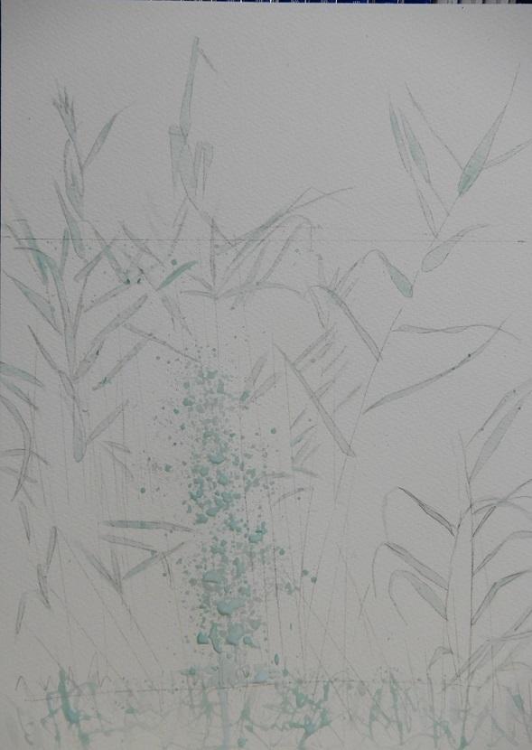 7月の教室の葦と水面のきらめきの過程_e0309795_21184368.jpg