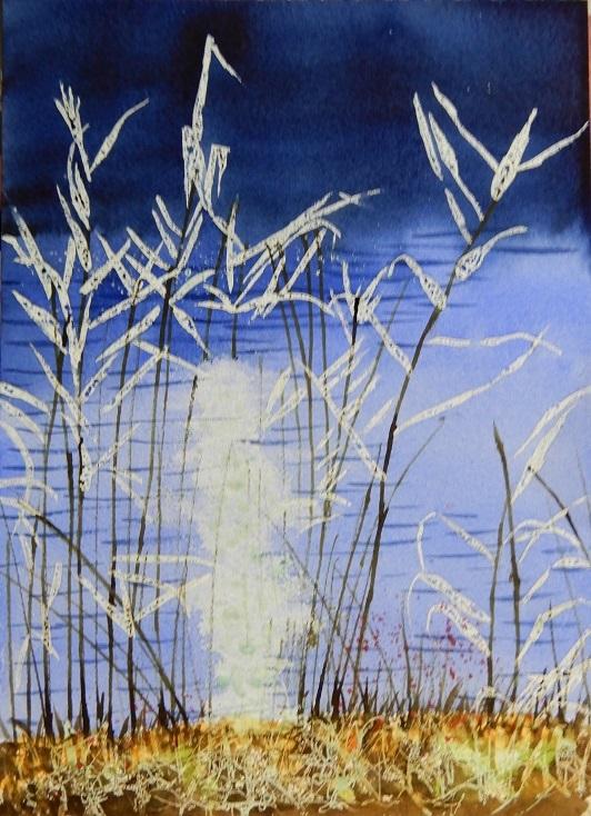 7月の教室の葦と水面のきらめきの過程_e0309795_21192255.jpg