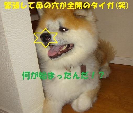 f0121712_14441231.jpg