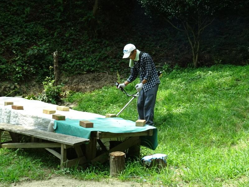 女性軍炎天下の草刈りに頑張る・・・孝子の森_c0108460_20383172.jpg