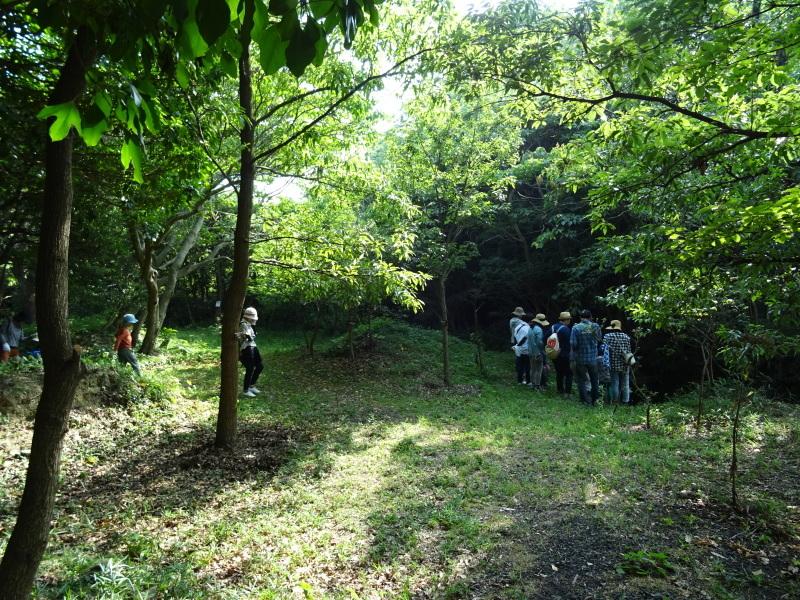 ZooCan企画「うみべの森で里山体験」_c0108460_23310547.jpg