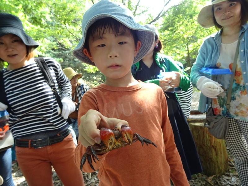 ZooCan企画「うみべの森で里山体験」_c0108460_23314725.jpg