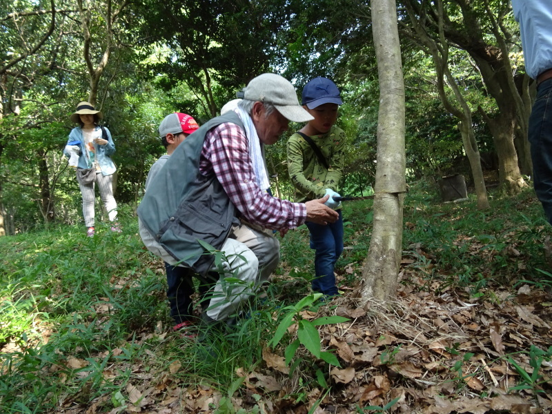 ZooCan企画「うみべの森で里山体験」_c0108460_23333356.jpg