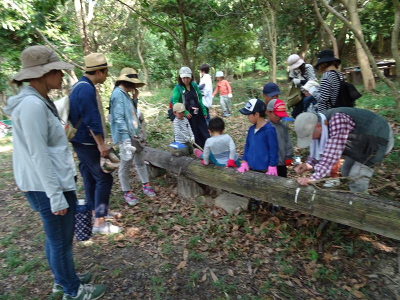 ZooCan企画「うみべの森で里山体験」_c0108460_23392826.jpg