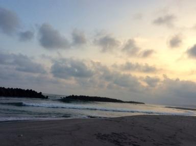 美しい貝殻 ☆ 海の光_c0203401_09575206.jpg