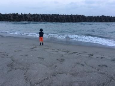 美しい貝殻 ☆ 海の光_c0203401_10013466.jpg
