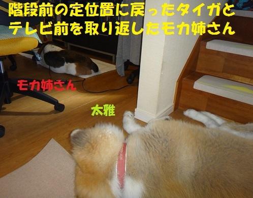 f0121712_21552132.jpg