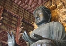 お釈迦様の手のひらのような珍しい巨木_e0310216_03330708.jpg