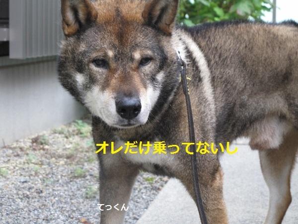 f0143123_09080055.jpg